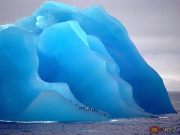 Pingwiny na odwróconej do góry nogami górze lodowej
