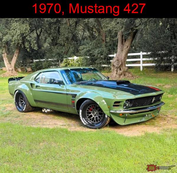 Piękny Mustang