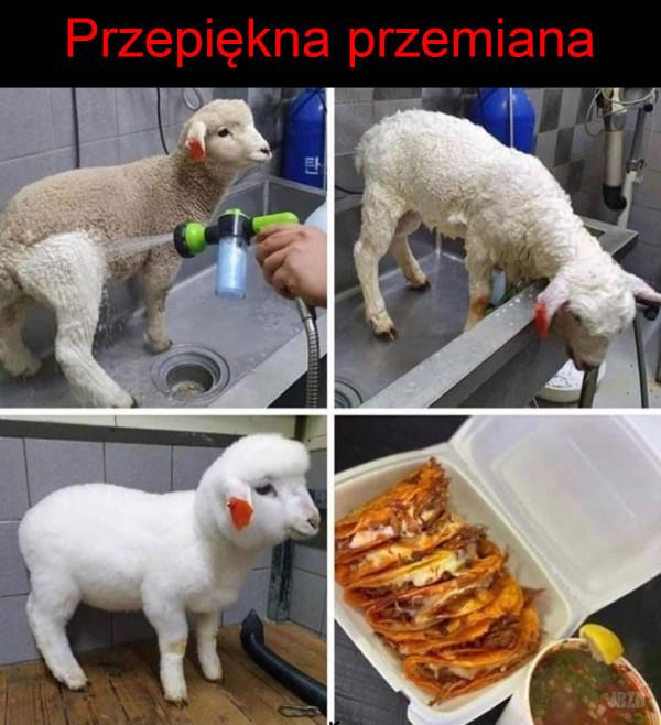 Przemiana