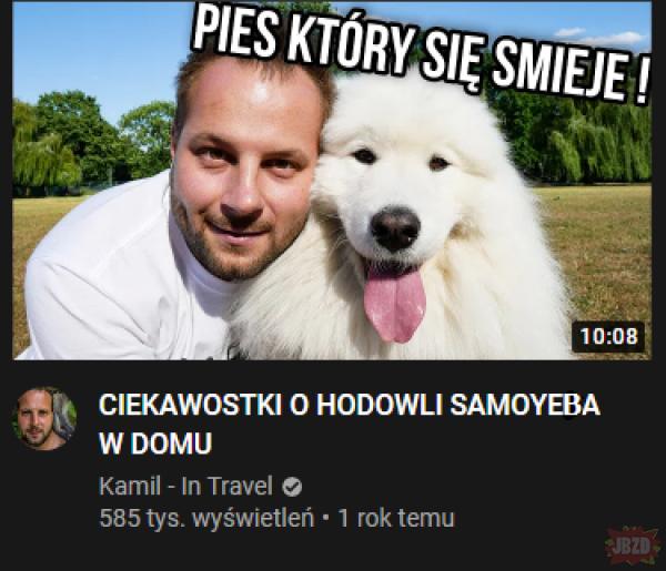 Pies rasy Dzidowiec