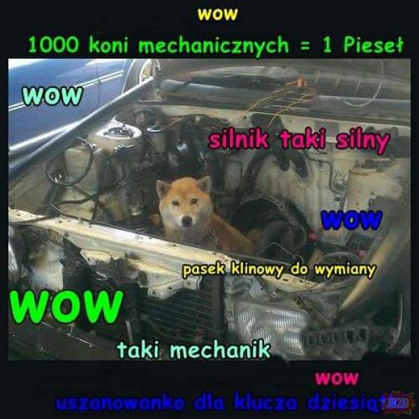 1 kilokoń mechaniczny = 1 pieseł