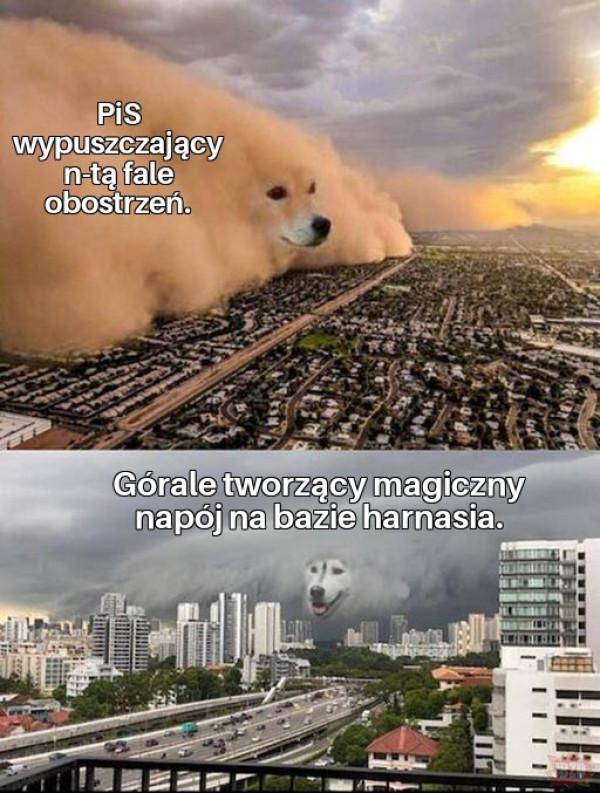 Powstanie Tatrzańskie rok 20XX, memowane