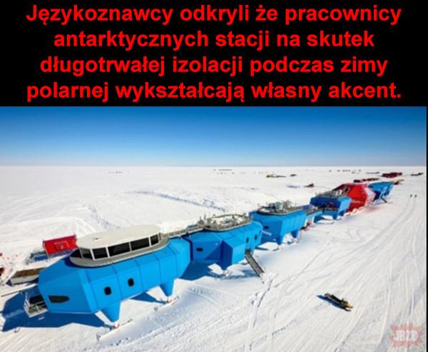 Język antarktydzki