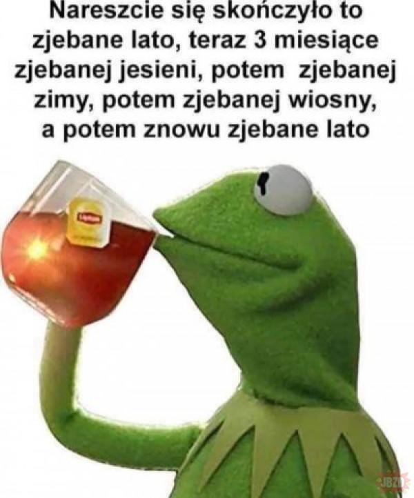 Zjebany rok
